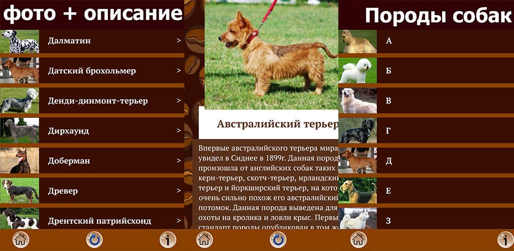 Приложения на дроид породы собак